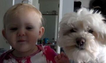 Δείτε τη μικρούλα πώς δείχνει στο σκυλάκι την αγάπη της (vid)