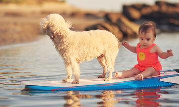 Όταν τα παιδιά θέλουν να βάλουν τον σκύλο στη θάλασσα: Επιτρέπεται ή όχι; Τι πρέπει να γνωρίζουν;