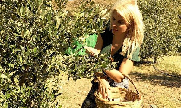 Η συνταγή για ελιές της Ελένης Μενεγάκη (pics)