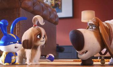 Η ταινία που πρέπει να δείτε με τα παιδιά σας:  Μπάτε Σκύλοι Αλέστε 2