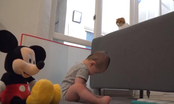 Η μοναδική σχέση ενός μωρού με μία γάτα μέσα από ένα υπέροχο βίντεο (vid)