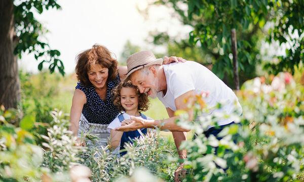 Γιαγιά και παππούς - Αξία ανεκτίμητη