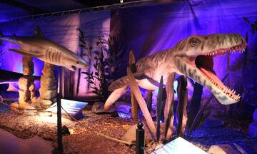 «Δεινόσαυροι και Τέρατα των Θαλασσών»: Μια κατάδυση στον μαγικό κόσμο των Ωκεανών