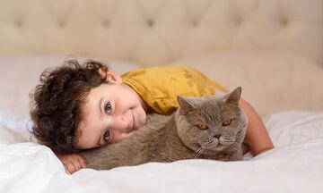 Τι κάνουμε όταν το μωρό έχει αλλεργία στη γάτα ή τον σκύλο; Όλα όσα πρέπει να γνωρίζετε