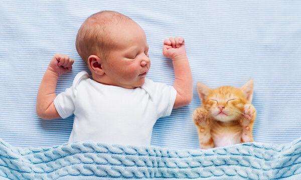 Θα αποκτήσω μωρό & έχω κατοικίδιο - Ποια θα πρέπει να είναι η προετοιμασία;