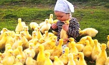 Τι μπορεί να συμβεί όταν μωρά παίζουν με ζωάκια; Δείτε το απολαυστικό βίντεο (vid)