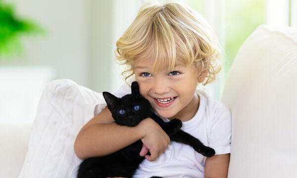 Γάτες σε ρόλο νταντάς - Ένα ξεκαρδιστικό βίντεο (vid)
