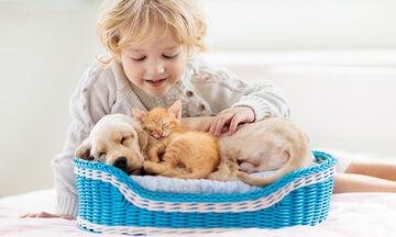 «Μαμά αγαπάω το σκυλάκι μας αλλά θέλω και γατάκι»