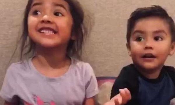 Μαθαίνουν ότι θα αποκτήσουν δίδυμα αδέλφια και η αντίδρασή τους είναι απρόβλεπτη (vid)