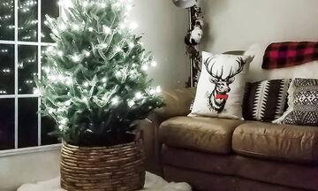 Μικρά χριστουγεννιάτικα δέντρα: Έχουν κι αυτά τη χάρη τους - Πάρτε ιδέες (pics)