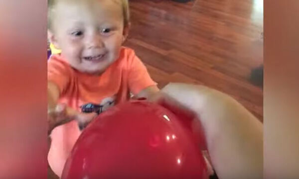 Όταν τα μωρά παίζουν με μπαλόνια - Ένα βίντεο που θα σας κάνει να ξεκαρδιστείτε (vid)