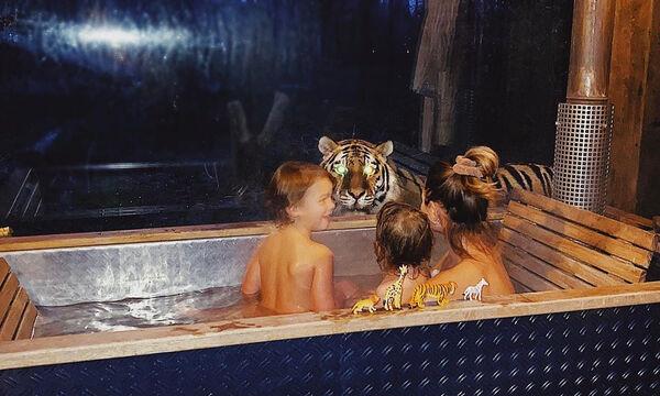 Διάσημη μαμά έκανε μπάνιο με τα παιδιά της όταν ξαφνικά εμφανίστηκε στο παράθυρο μία τίγρη (pics)
