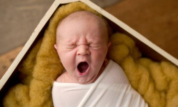 Νεογέννητα ποζάρουν για τον φωτογραφικό φακό και είναι αξιολάτρευτα (pics)