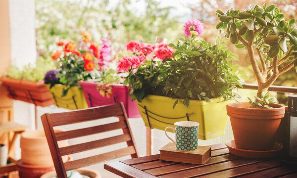 #Μένουμε_Σπίτι: Εύκολες και απλές ιδέες για να διακοσμήσετε τη βεράντα σας (vid)
