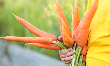 Παιδί και διατροφή: Τα επτά σημαντικά οφέλη το καρότου στην υγεία των παιδιών (pics)