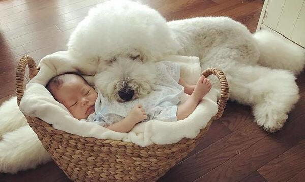 Αυτές οι φωτογραφίες δύο αδελφών με τα σκυλάκια τους είναι ό,τι πιο όμορφο θα δείτε σήμερα (pics)