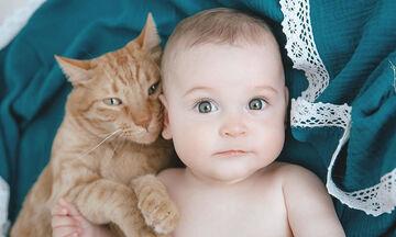 Μωρά και γατάκια σε απολαυστικά στιγμιότυπα - Δείτε φωτογραφίες