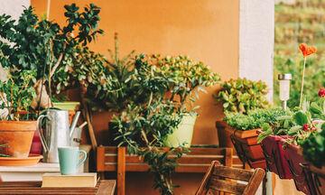 Έχετε μικρό μπαλκόνι; Υπέροχες ιδέες για την πιο cozy διακόσμησή του
