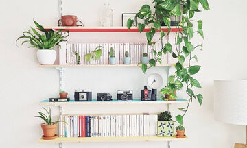 Ράφια τοίχου: Δείτε πόσες επιλογές έχετε για τo σπίτι σας (pics)