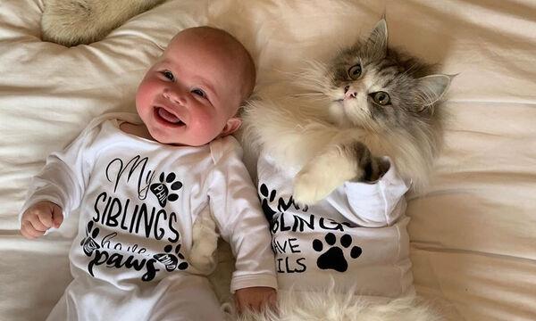 #InternationalCatDay: Μωρά και γατάκια σε απίθανα στιγμιότυπα (pics)