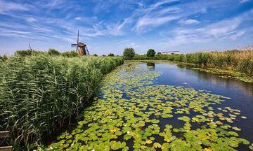Ολλανδία: Τοπία που μοιάζουν με πίνακες ζωγραφικής (pics)