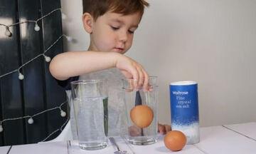 Πέντε πειράματα με αυγά που θα ενθουσιάσουν τα παιδιά