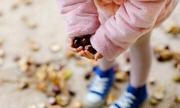 Κάστανα: Γνωρίστε τα πέντε απίθανα οφέλη για την υγεία των παιδιών