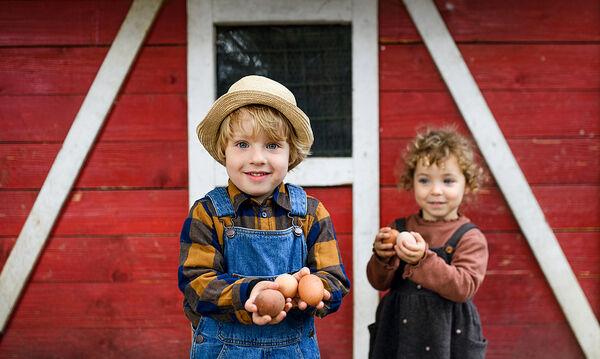 Τα οφέλη του αυγού στη διατροφή του παιδιού & συνταγές για να το φάνε