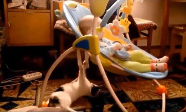 Γάτες σε ρόλο babysitter - Δείτε το απολαυστικό βίντεο