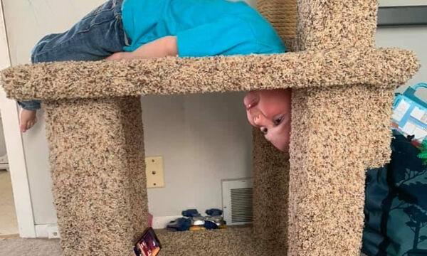 Κόλλησε το κεφάλι του στο σπιτάκι της γάτας και οι φώτο έγιναν viral