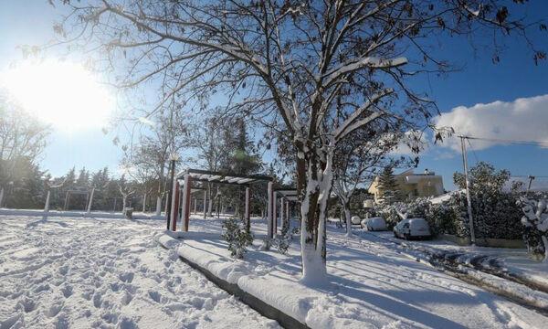 Κακοκαιρία «Λέανδρος»: Η Ελλάδα στην… κατάψυξη! Πού και πότε θα χιονίσει – Νιφάδες και στην Αθήνα