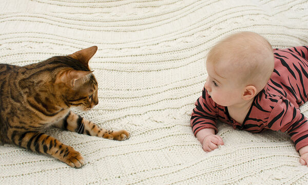 Γάτες κάνουν babysitting στο μωρό και είναι απλά αξιολάτρευτες (vids)