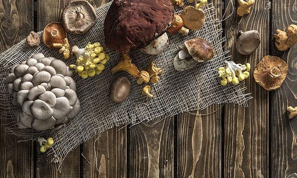 Tips μαγειρικής από τον Άκη: Μαγειρεύουμε με μανιτάρια