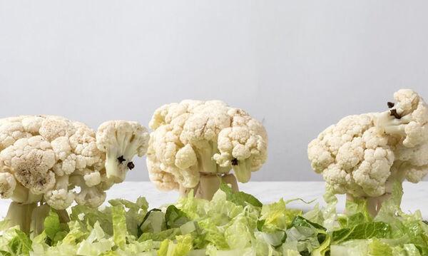 Προβατάκια από κουνουπίδι - Ένα πιάτο για παιδιά και όχι μόνο