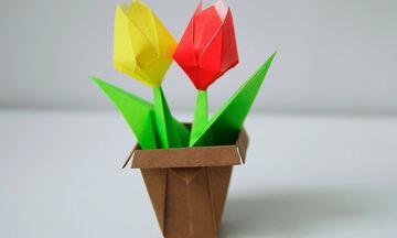 Χειροτεχνίες για παιδιά: Φτιάξτε γλαστράκια origami σε λίγα λεπτά