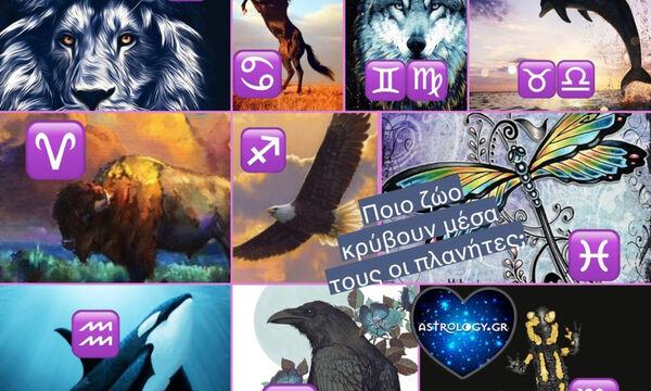 Ποιο ζώο «κρύβει» μέσα του ο κάθε πλανήτης και τι σημαίνει αυτό για σένα;