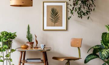 Ποια είναι τα καλύτερα φυτά εσωτερικού χώρου σύμφωνα με το Feng Shui