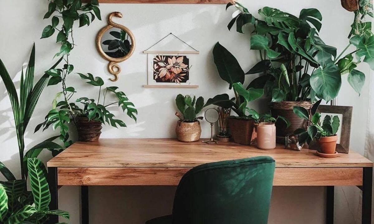 Plant office: 8 γραφεία κάνουν την τηλεργασία αυτό το καλοκαίρι... τον απόλυτο παράδεισο!