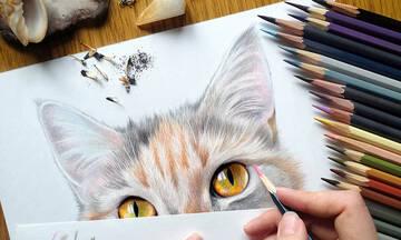 Δέκα χρωμοσελίδες με γατάκια για εκτύπωση (εικόνες)