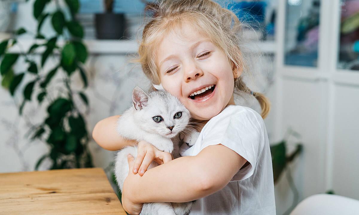 Ψύλλοι και γάτα - Μυστικά για πρόληψη και αντιμετώπιση στο σπίτι
