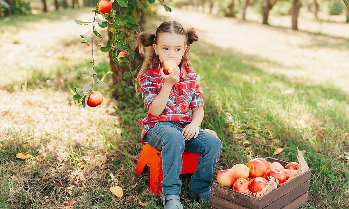 Δεν τρώνε τα παιδιά σας τα μήλα; Δοκιμάστε με αυτό το ντιπάκι