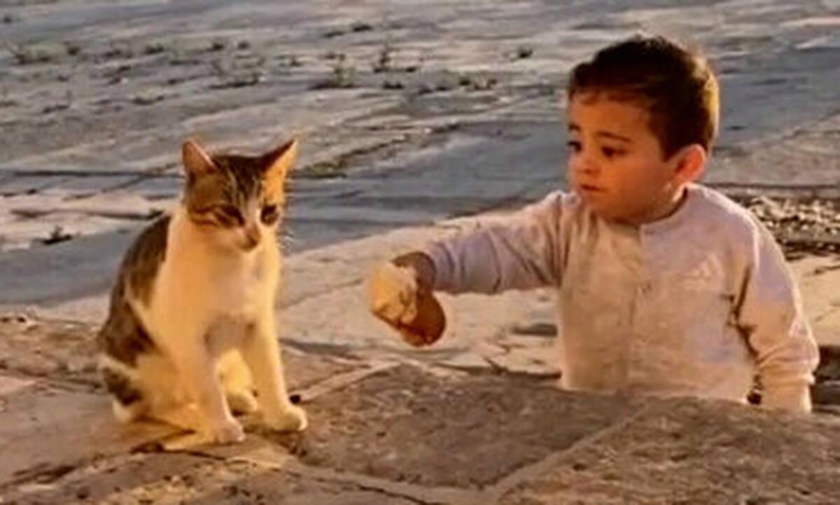 Ένα μικρό παιδί μοιράστηκε το φαγητό του με μια γάτα και τρέλανε το Twitter