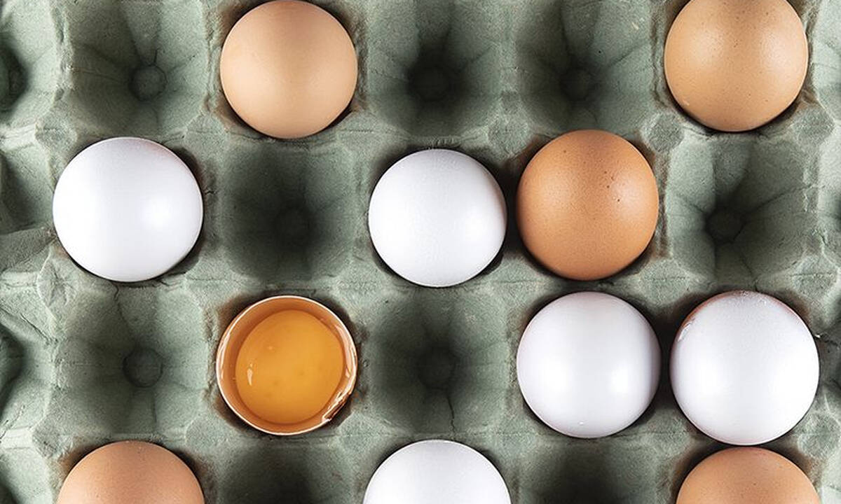 Tips για μαμάδες: Μπορούμε να καταψύξουμε ένα ωμό αβγό;