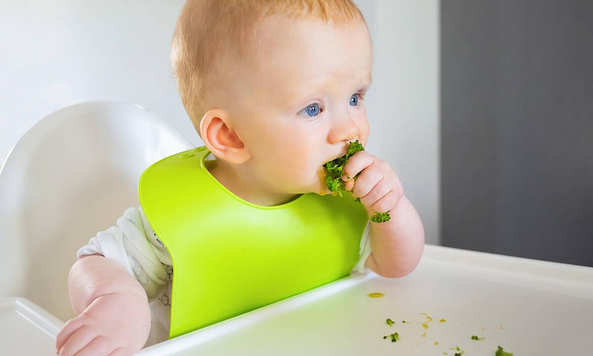 Vegan διατροφή για μωρά: Τι πρέπει να γνωρίζετε