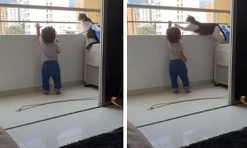 Μωράκι προσπαθεί να πιάσει τα κάγκελα του μπαλκονιού και η γάτα το αποτρέπει